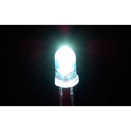 LEDs do futuro podem ser 60% mais brilhantes graças aos vagalumes